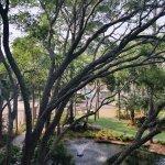 Foto de The Westin Hilton Head Island Resort & Spa