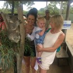 Photo de Hunter Valley Zoo