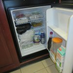 This is the size of the fridge--no freezer