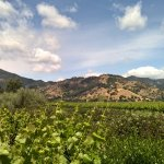 A day biking past vineyards, up the valleys, and under the clouds is sure to a day to remember!
