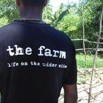 The Farm Foto