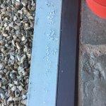 Broad Downs Barn resmi