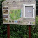 Duffield Millennium Meadow