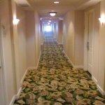 Foto di Monumental Hotel Orlando