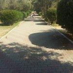 Napeto Village resmi