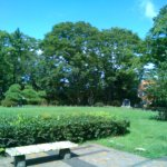 気持ちのいい芝生の公園