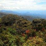 Cameron Highlands Trail No. 10 Foto