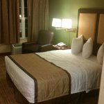 Very comfortable place, newly renovated. Extremely comfortable beds, very clean. Very friendly a