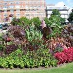 Lower Gardens Foto