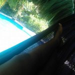 FB_IMG_1472830217936_large.jpg