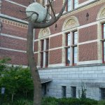 Photo of Rijksmuseum Schiphol