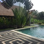 Hati Padi Cottages Photo
