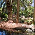 Foto de Paradise Garden Buffet