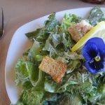 Well presented Caesar salad