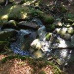 Naturschutzgebiet Holle
