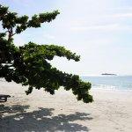 Paradee Resort & Spa Hotel Foto