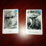 cool key cards for room