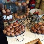 Fresh hens eggs.