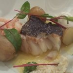 Harengs sous ses 4 formes, char, scallops, et cabillaud