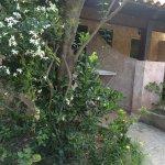 Photo of Residenza La Vigna