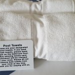 You don't need to cannibalize your bath towels...they have pool towels, too!