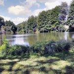 Environs : Petit étang proche du château de Rochechouart