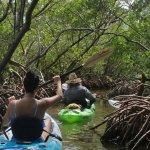 Foto de Sea Life Kayak Adventures