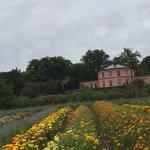 花畑では好きなだけ花を摘み、レジに持って行き量に応じた金額を支払うシステム。