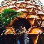 Climbing inside the Big Pineapple