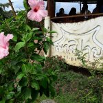 Foto de Mari Pai Resort