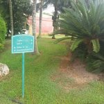 Disio Resort Foto