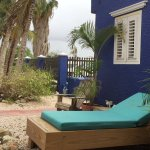 Blachi Koko Apartments Bonaire صورة فوتوغرافية