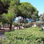 Photo de Aurum Hotel - Villaggio dei Pini