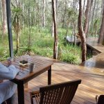 Amazing!! Eco lodge 1