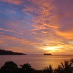 Photo de La Gaviota Tropical
