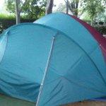Camping Bungalows El Pinajarro