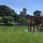 Brooklyn Botanic Garden Foto