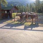 Opção de passeio à cavalo