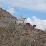 Tsemo Castle and Gompa seen from the Hotel Grounds