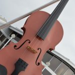 Sydney is the home to the World's Largest Fiddle