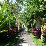 Photo of The Samaya Bali Ubud