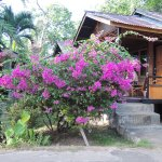 Photo of Daniel's Resort aka Daniel's Homestay