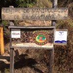 Visita al centre de la Castanya de Viladrau