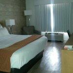 Foto de Holiday Inn St. Louis SW Route 66