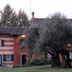 Photo of Musella Winery & Country Relais