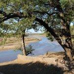 Naledi Bushcamp and Enkoveni Camp Foto