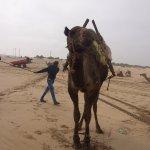 Photo of Essaouira Beach