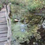 Reserva Municipal Refugio Natural Educativo Ribera Norte