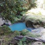 Tubagua Plantation Eco Lodge Foto