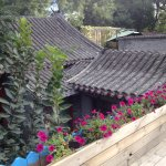 Photo de Yue Xuan Courtyard Garden International Youth Hostel
